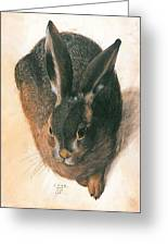 Hare 1528  Greeting Card