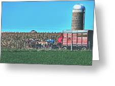 Harvest In Amish Country - Elkhart County, Indiana Greeting Card