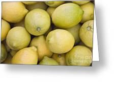 Harvested Lemons Greeting Card
