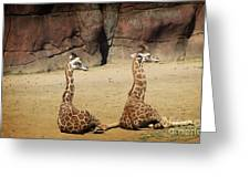 Having A Giraffe Greeting Card