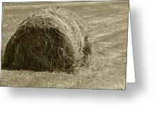 Hay Bale In A Field Greeting Card