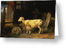 Heath Ewe And Lambs Greeting Card