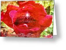 Hebrews 13 4 Greeting Card