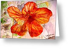 Hibiscus 2 Greeting Card