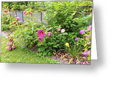 Hibiscus In The Garden Greeting Card
