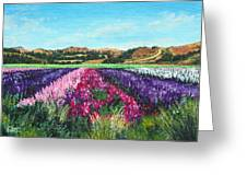 Highway 246 Flowers 3 Greeting Card