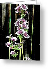 Hollyhocks Greeting Card