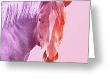 Horse 6 Greeting Card