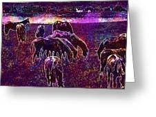 Horses Flock Coupling Ride Animals  Greeting Card