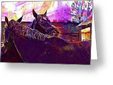 Horses Harmony For Two Animal World  Greeting Card