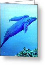 Humpback Mother Whale And Calf #21 Greeting Card