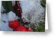 Ice Berries Greeting Card