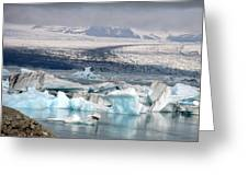 Iceland Glacier Lagoon Greeting Card