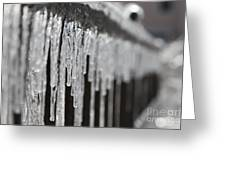 Icicles At Attention Greeting Card