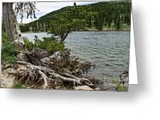 Idaho Lake Greeting Card