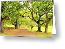 Image08 Greeting Card