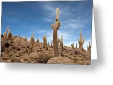 Incahuasi Island View With Giant Cacti Greeting Card
