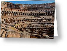 Interior Of The Coliseum, Rome, Italy Greeting Card