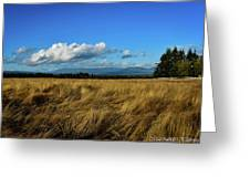 Into The Grasslands. Greeting Card