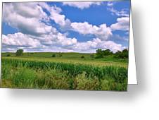 Iowa Cornfield Greeting Card