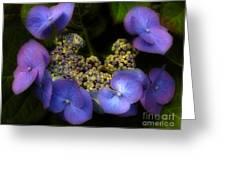 Iridescent Blue Greeting Card