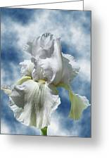 Iris In The Clouds Greeting Card