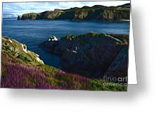 Irish Seascape Greeting Card