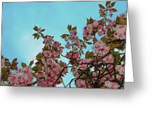 Irish Spring Greeting Card