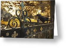 Jackdaw On Church Gates Greeting Card by Amanda Elwell