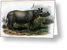 Javan Rhinoceros, Endangered Species Greeting Card