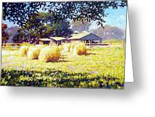 Jenny Rays Farm Greeting Card
