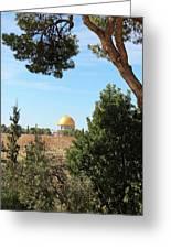 Jerusalem Trees Greeting Card
