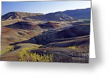 John Day Fossil Beds  Greeting Card
