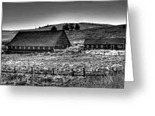 Johnson Road Barns Greeting Card