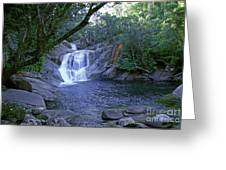Josephine Falls And Tropical Pool Greeting Card