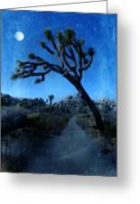 Joshua Trees At Night Greeting Card