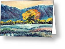 Judys Tree Greeting Card