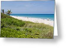 Juno Beach In Florida Greeting Card
