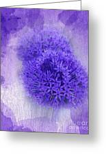 Just A Lilac Dream -4- Greeting Card