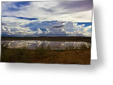 Kalahari Rain Dance Greeting Card by Basie Van Zyl