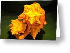 Karco Orange Greeting Card by Arlin Jules