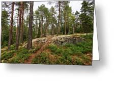 Kaukaloistenkallio Hillside View Greeting Card
