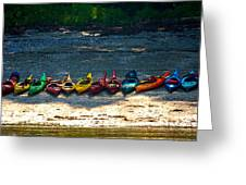 Kayaks In A Row Greeting Card