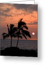 Kona Sunset Greeting Card by Kelly Wade