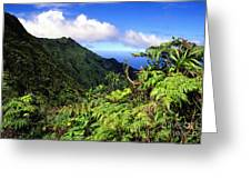Koolau Summit Trail Greeting Card