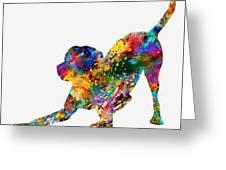 Labrador Retriever-colorful Greeting Card