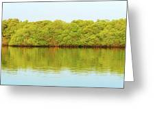 Lagoon On Santa Cruz Island In Galapagos Greeting Card