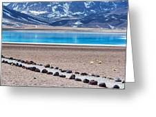 Lake Miscanti In Chile Greeting Card