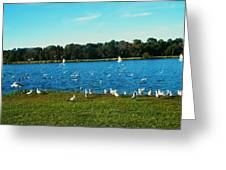 Lake Myers. Greeting Card