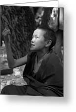 Lama Baby Greeting Card